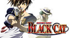 Show_thumbnail_black_cat